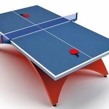新款乒乓球台供货商图片