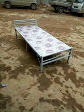 赤水单层床批发厂家图片