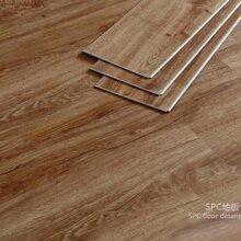 石塑地板/spc锁扣地板专业生产厂家、全国供货图片