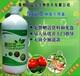 绿色种植远离农药化肥照样可以种出高品质农产品