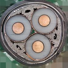 贵州供应高压电缆