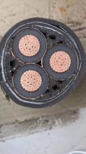双桥区专业高压电缆图片