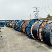 九龙坡区哪里买高压电缆