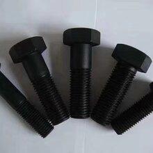 彩盛紧固件厂家直销处供应8.8级10.9级12.9级特大超长内外六角螺栓螺帽