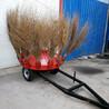 自动扫地机厂家拖拉机扫地机折叠式扫地机道路扫地机