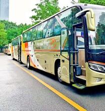 环保大巴车优质服务旅游大巴图片