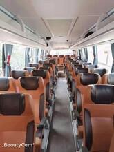 布吉优质全新48座市际牌旅游大巴深圳旅游大巴租赁图片