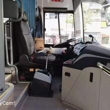 专用全新48座市际牌旅游大巴安全可靠深圳旅游大巴租赁图片