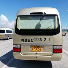 环保大巴车服务周到旅游大巴图片