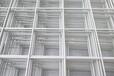 鍍塑鐵網195噴塑鐵絲網片碰焊網批發定做