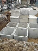 运城水泥化粪池生产图片
