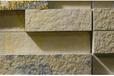 2020年德国纽伦堡国际石材及加工技术展览会Stone+tec—新天是官方代理