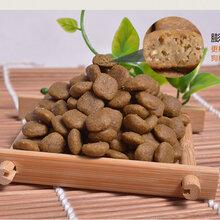 寵物食品狗糧貓糧加工代工petfood