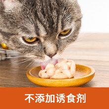貓條加工代工,狗糧加工廠,貓糧加工廠,狗糧代工,貓糧代工