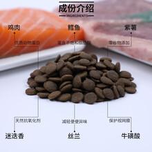 山東漢歐鮮肉貓糧狗糧加工OEM代工山東帥克寵物零食加工OEM代工