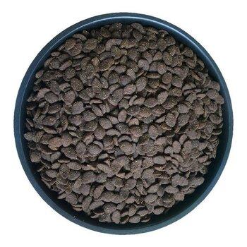 山東漢歐貓糧代工,山東漢歐,國內有名寵物食品代工廠