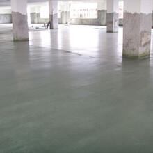 广东水泥密封剂硬化地坪施工团队图片