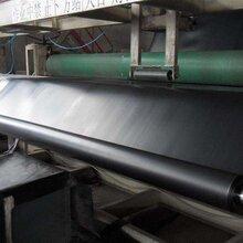 廠家定制hdpe土工膜防滲土工膜適用養殖場大型油庫圖片
