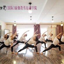 沈阳瑜伽培训学校年末收官招生-报名立省2000元