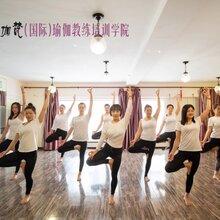 沈阳专业瑜伽培训_多少钱_现在报名立减2000元