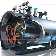 天津南開天然氣蒸汽鍋爐生產安裝調試圖片