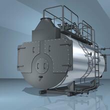武清立式蒸汽鍋爐生產安裝調試圖片