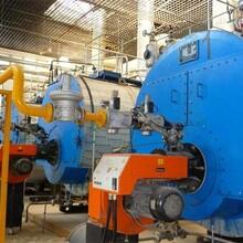 河南周口燃油蒸汽鍋爐制造廠家圖片