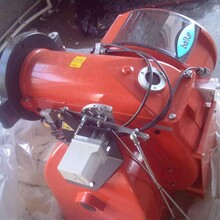 內蒙古呼倫貝爾生物質蒸汽鍋爐制造廠家查詢圖片