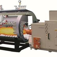 溫州導熱油鍋爐廠家價格定制生產圖片