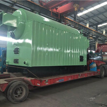 雞西燃氣低氮鍋爐廠家價格定制生產圖片