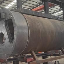 棗莊兩噸生物質鍋爐生產廠家_歡迎咨詢圖片