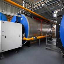 張家口生物質蒸汽發生器廠家生產安裝調試圖片