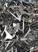 新洲區專業塑料上門回收
