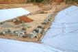 防水土工膜价格