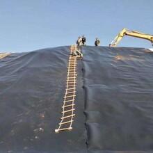 复合防渗土工膜规格型号图片