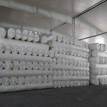 河北省沧州市复合土工膜厂家图片