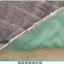 复合环保草毯图片