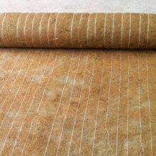 植嗡物纤维毯_生态》毯图片