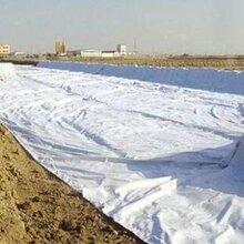 固原防水土工布市场价格图片