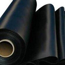 土工膜防渗膜、防渗膜、一亩价格图片