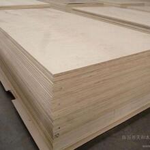 东莞木皮工厂直销图片