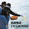 天津海葬_天津海葬费用_天津海葬服务_天津海葬流程