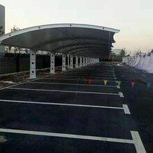 泰州膜结构车棚生产厂家图片