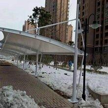 上海膜结构车棚供应商图片