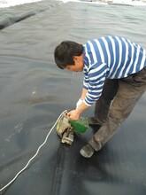 产地货源现货充足支持定制土工膜规格齐全可提供检测报告防渗膜图片