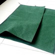 常年出售多种规格型号绿色生态袋护坡挡墙用土工布绿化生态袋图片