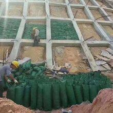物业车库挡水挡墙用防洪生态袋河堤水渠护坡生态袋图片