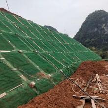 厂家直销多种规格型号三维植被网护坡绿化可降解全新料三维植草网图片