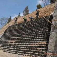 超聲波焊接hdpe蜂巢土工格室圖片
