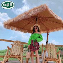 广东罗马茅草伞要多少钱
